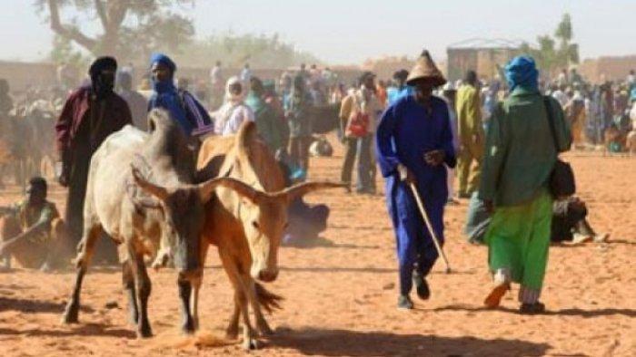 Fulani-Herdsmen1-2