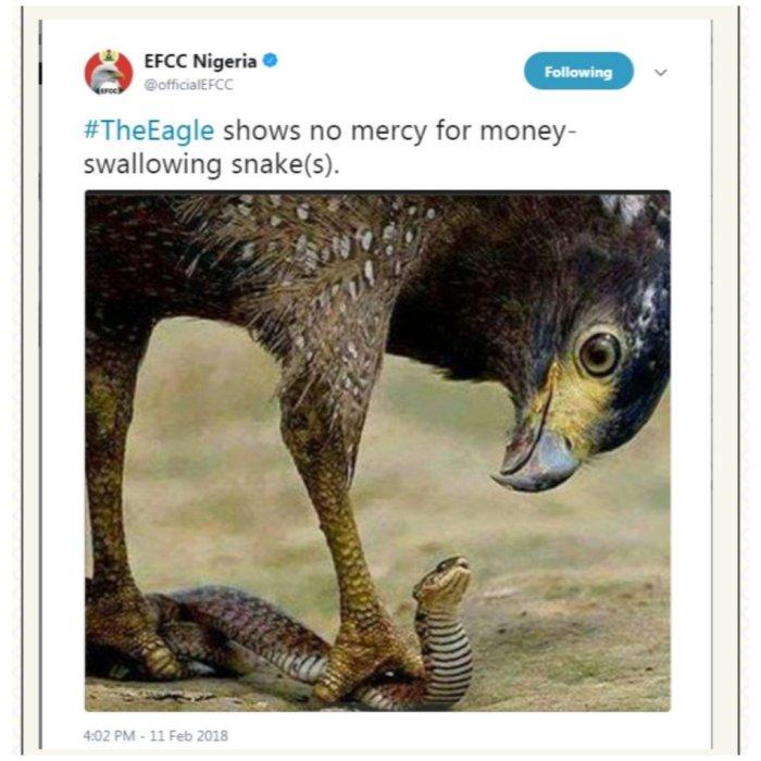efcc eagle