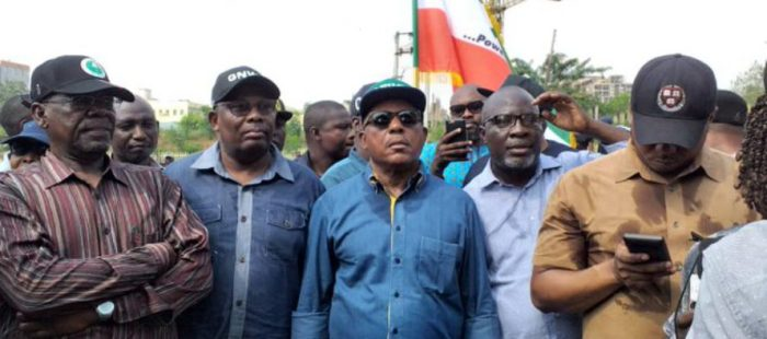 PDP-INEC-Protest-