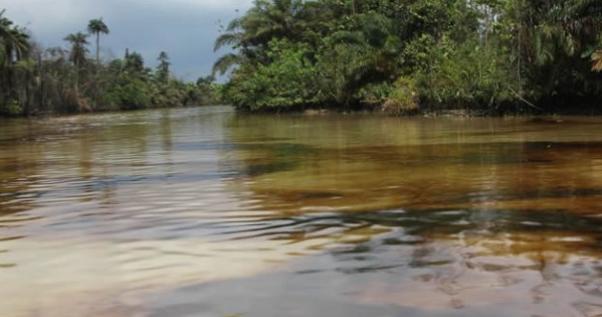 bayelsa-river